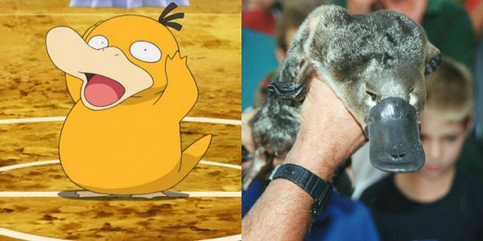 Quai vat trong loat phim Pokemon lay mau tu nhung loai vat nao?-Hinh-16