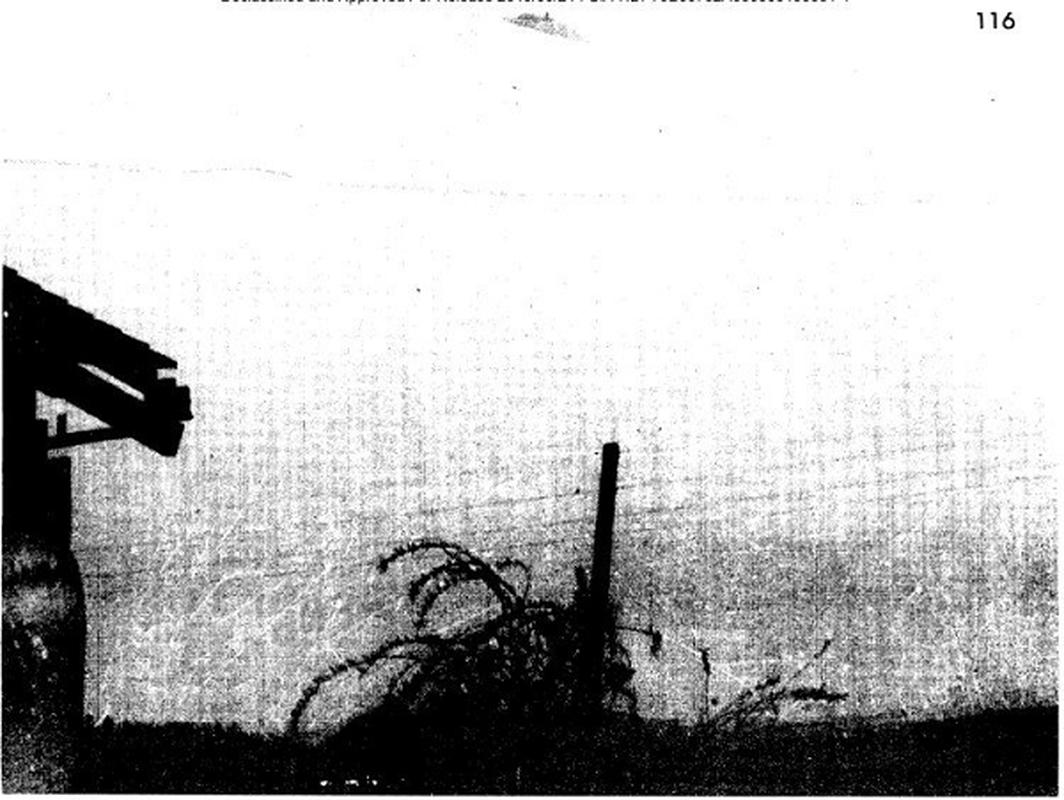 CIA noi gi trong kho du lieu tuyet mat ve UFO vua cong bo?-Hinh-11