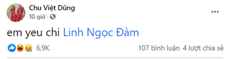 Linh Ngoc Dam nhan yeu thuong nhieu, khung bo cung lam-Hinh-8