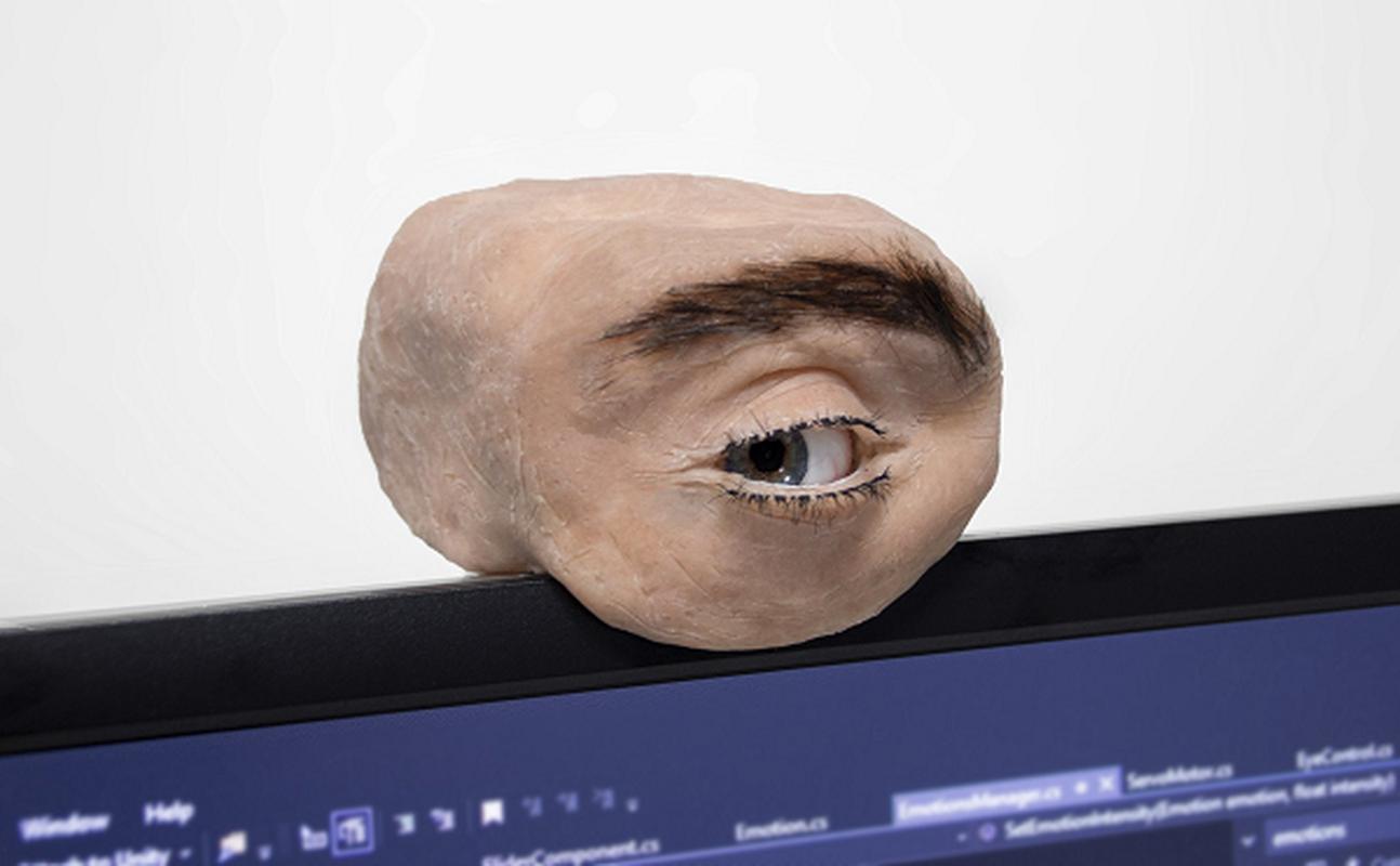 Het hon webcam hinh mat nguoi chuyen dong y nhu that-Hinh-2