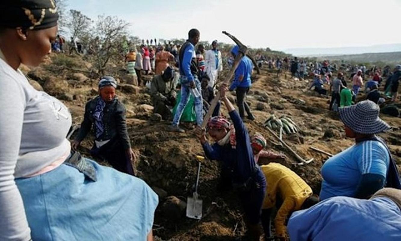 Thu khien hang nghin dan Nam Phi do xo dao hoa ra cuc re tien-Hinh-3