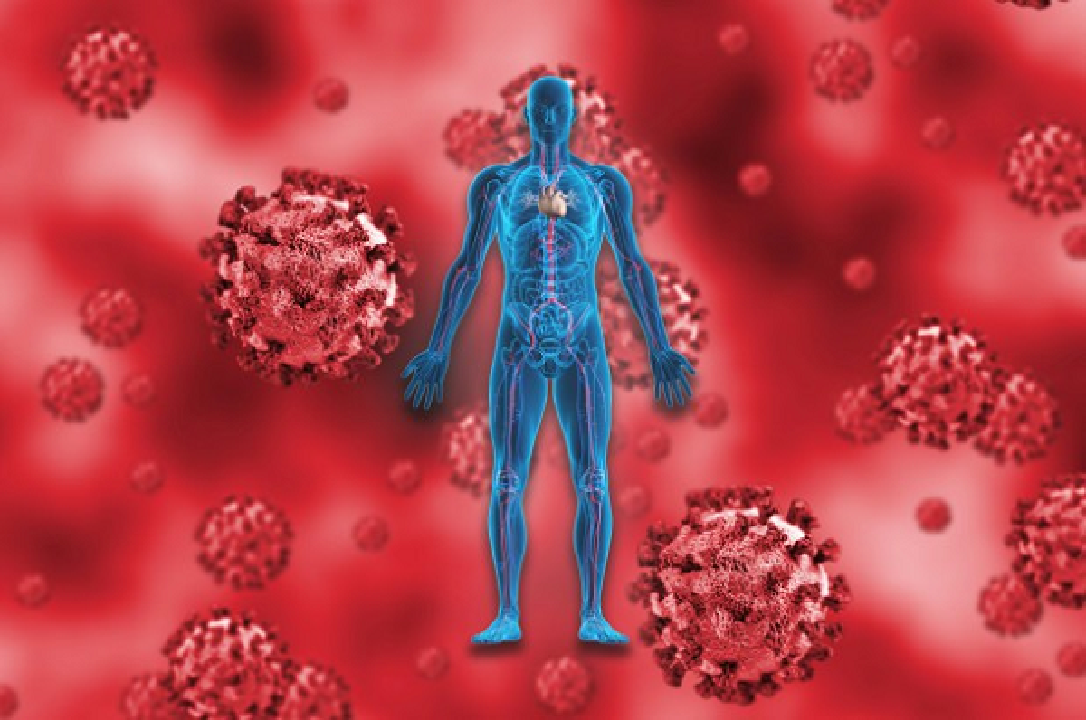 Cuc nong: To tien cua virus corona