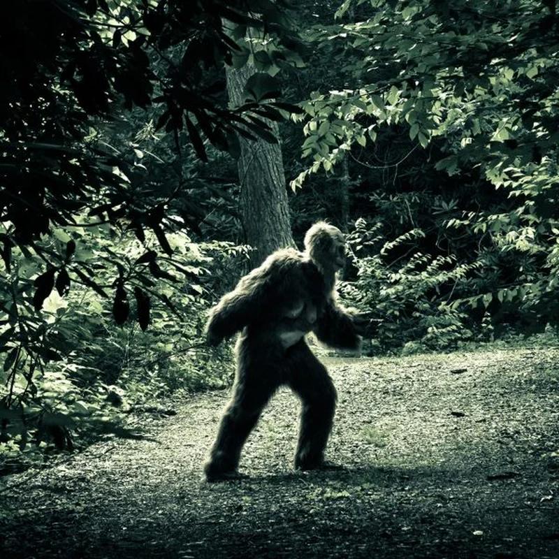 Bat qua tang khoanh khac quai vat Bigfoot xuat hien treu con nguoi-Hinh-5
