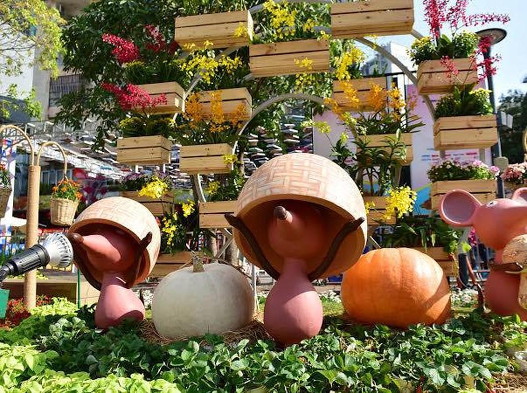 Chiem nguong duong hoa Nguyen Hue truoc ngay khai mac-Hinh-3