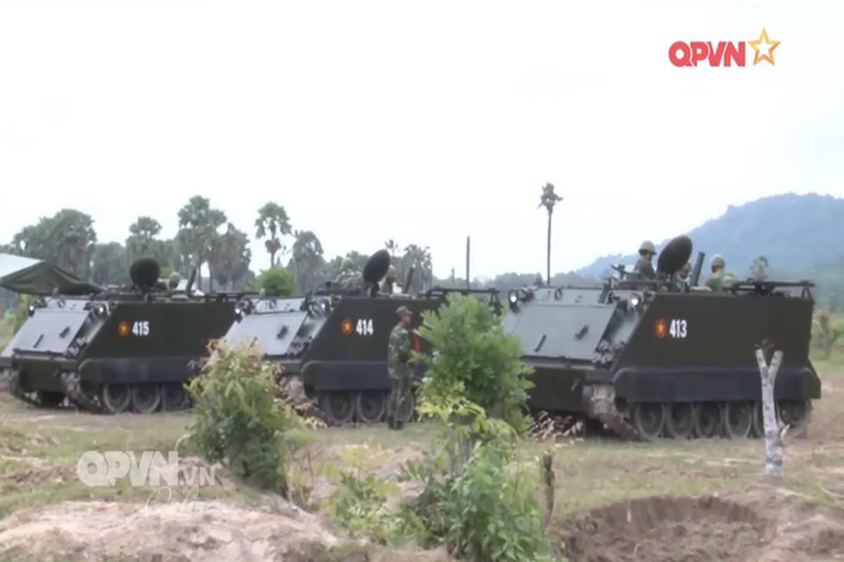 Kinh ngac dan phao coi tu hanh moi cua phao binh Viet Nam-Hinh-3