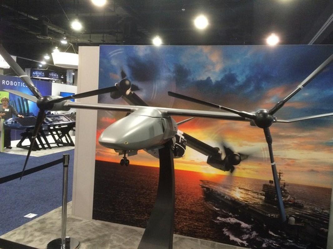 Bat ngo UAV canh lat My manh ngang chien dau co-Hinh-3