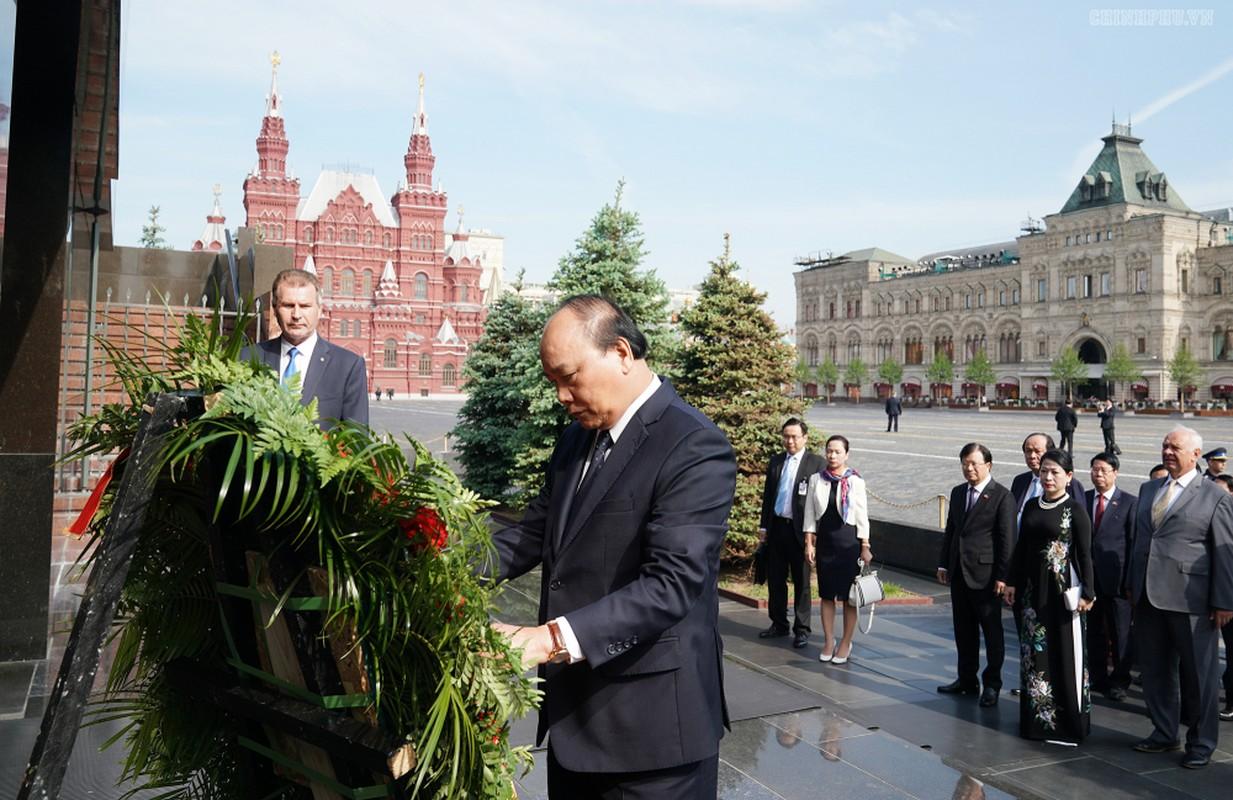 Thu tuong Nguyen Xuan Phuc hoi kien Tong thong Nga Vladimir Putin-Hinh-2