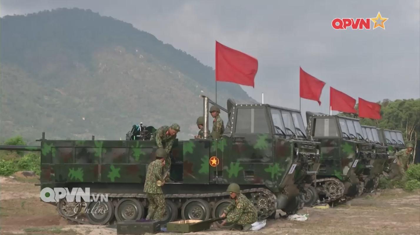 """Phao D-44 Viet Nam """"hoa rong"""" bang cach khong ngo-Hinh-2"""