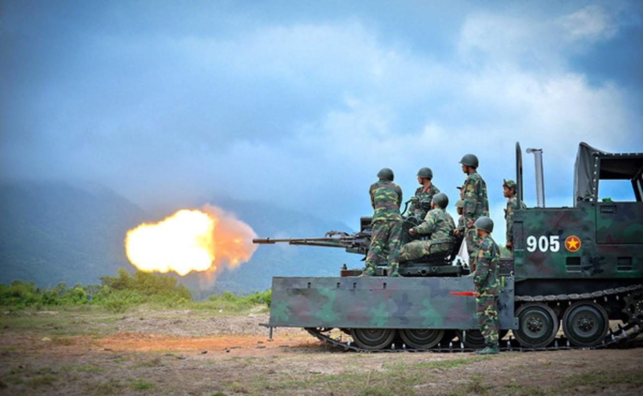 """Phao D-44 Viet Nam """"hoa rong"""" bang cach khong ngo-Hinh-8"""