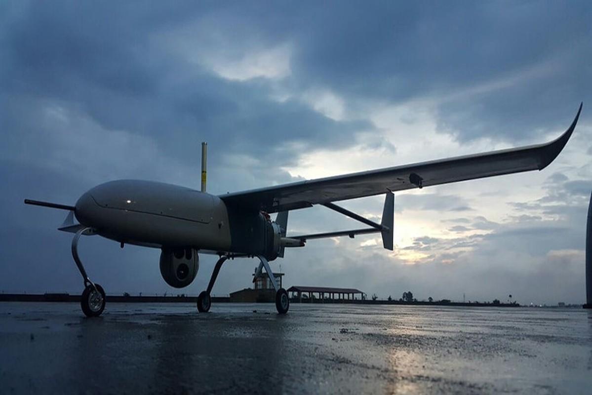 UAV trinh sat moi cua BDBP Viet Nam hien dai ra sao?-Hinh-5