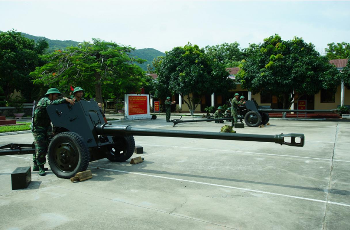 """An tuong """"manh"""" voi mau phao tu hanh moi cung cua Viet Nam-Hinh-12"""