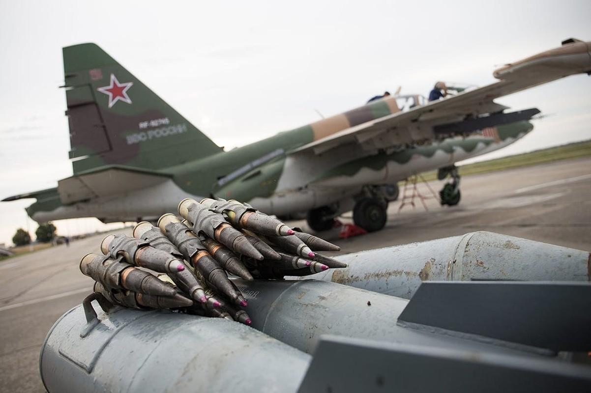 Azerbaijan: Khong quan xuat kich 600 lan, mat duy nhat mot may bay-Hinh-8
