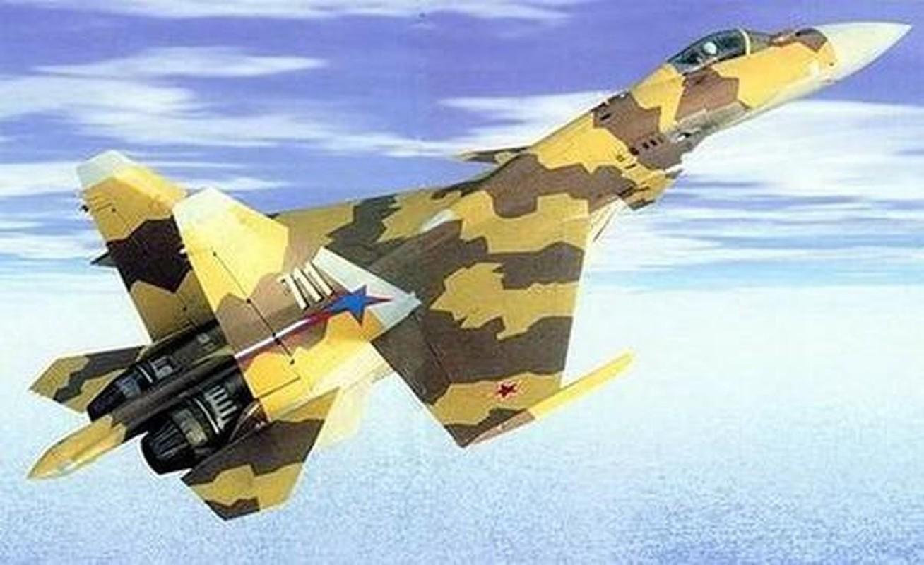 Su-37 da tao ra cuoc cach mang hang khong quan su nhu the nao?-Hinh-10