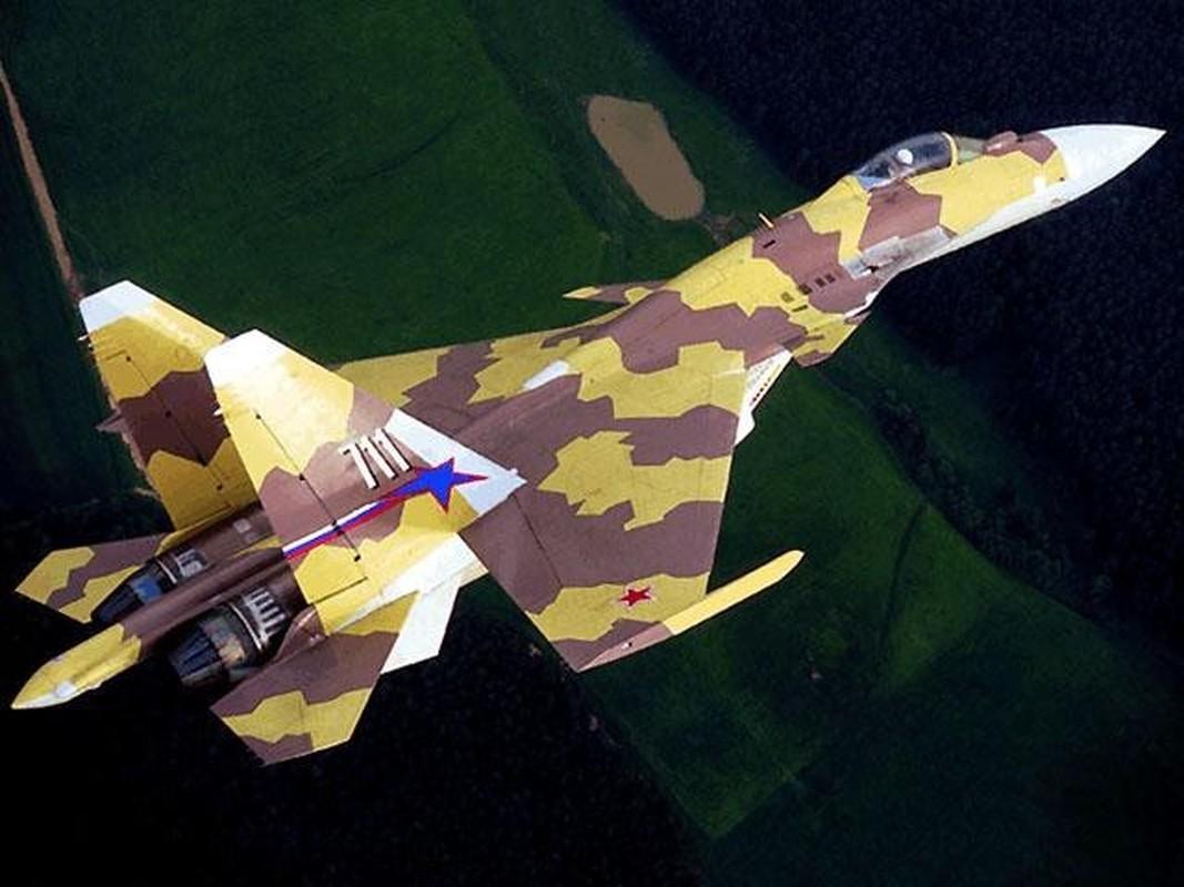 Su-37 da tao ra cuoc cach mang hang khong quan su nhu the nao?-Hinh-11
