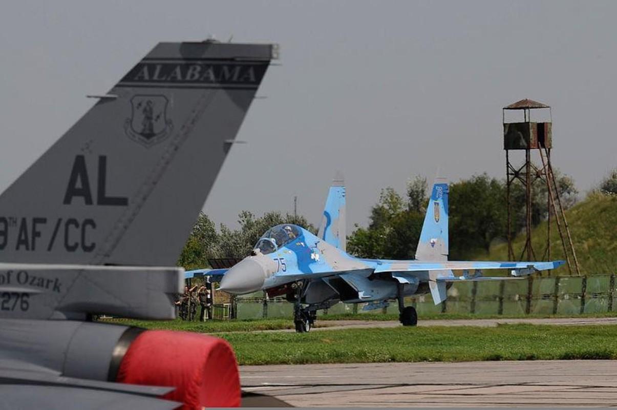 Chuyen gia My de xuat cung cap 100 chien dau co toi tan cho Ukraine-Hinh-10