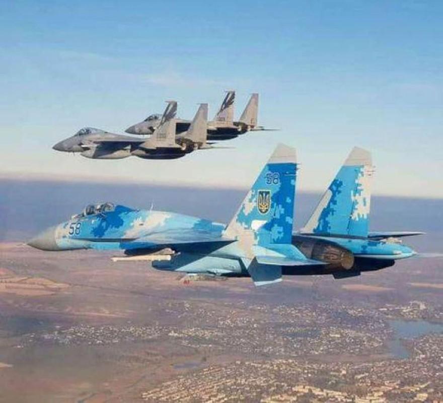 Chuyen gia My de xuat cung cap 100 chien dau co toi tan cho Ukraine-Hinh-11