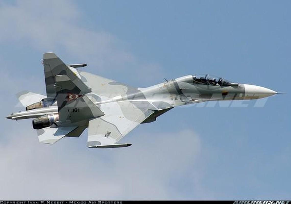 Vi sao Su-30MK2 Venezuela phai 'nam dat' hang loat khi con rat moi?-Hinh-6