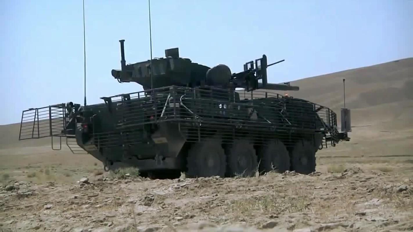 My tim doi tac nhuong lai toan bo xe tang banh lop M1128 MGS-Hinh-13