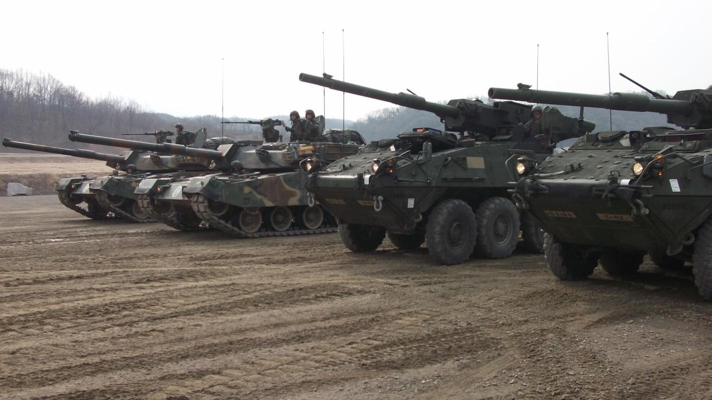 My tim doi tac nhuong lai toan bo xe tang banh lop M1128 MGS-Hinh-14