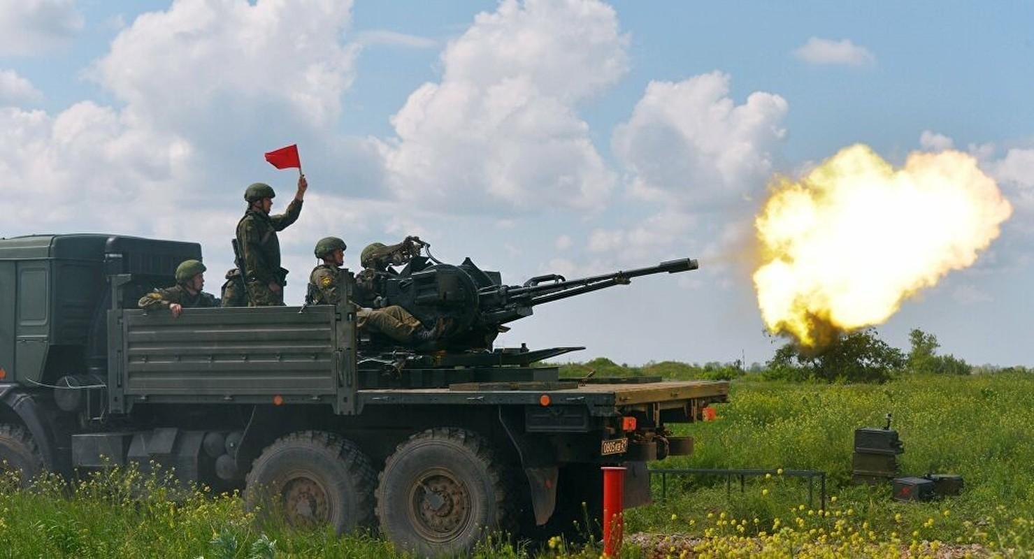 Bat chuoc Viet Nam, Venezuela bien ZU-23-2 thanh phao tu hanh-Hinh-3