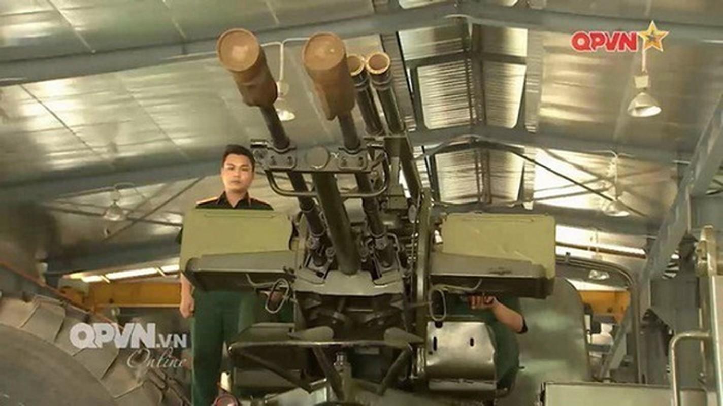 Bat chuoc Viet Nam, Venezuela bien ZU-23-2 thanh phao tu hanh-Hinh-6