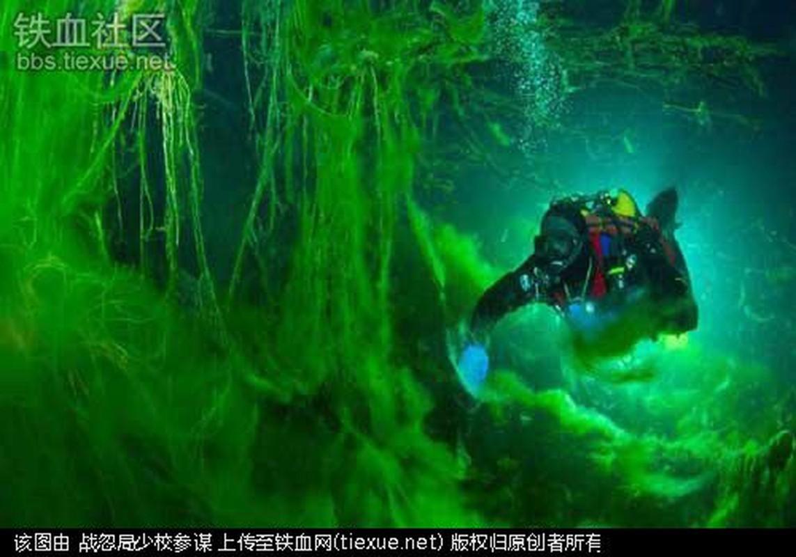 Thot tim truoc nhung cong viec nguy hiem nhat hanh tinh-Hinh-5