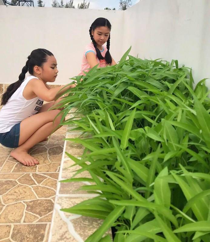 Chiem nguong biet thu sau tu sua cua MC Quyen Linh va vo dai gia-Hinh-10