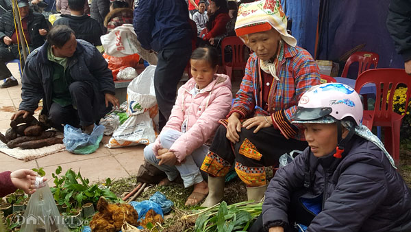 La liet 'than duoc' tren nui cao duoc nguoi Dao Mau Son mang bay ban-Hinh-3