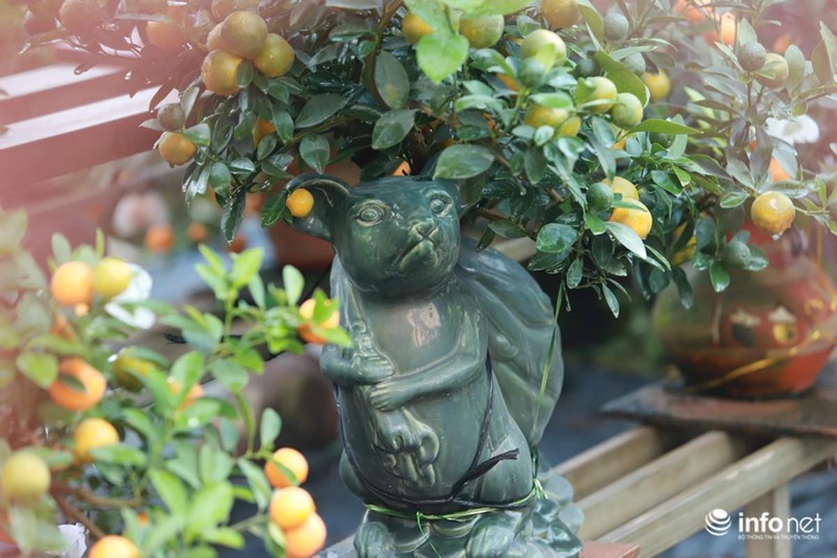 """Chuot cong quat bonsai"" gia ca trieu moi cay, hut khach dip Tet Canh Ty-Hinh-4"
