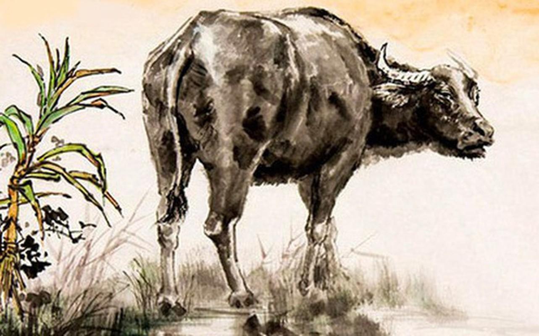5 con giáp nữ số đã định phải mập mạp mới có phúc khí
