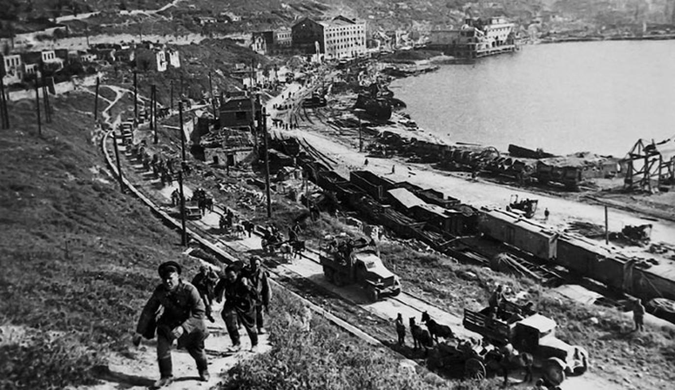 Vi sao Lien Xo dai bai o ban dao Crimea nam 1942?-Hinh-2