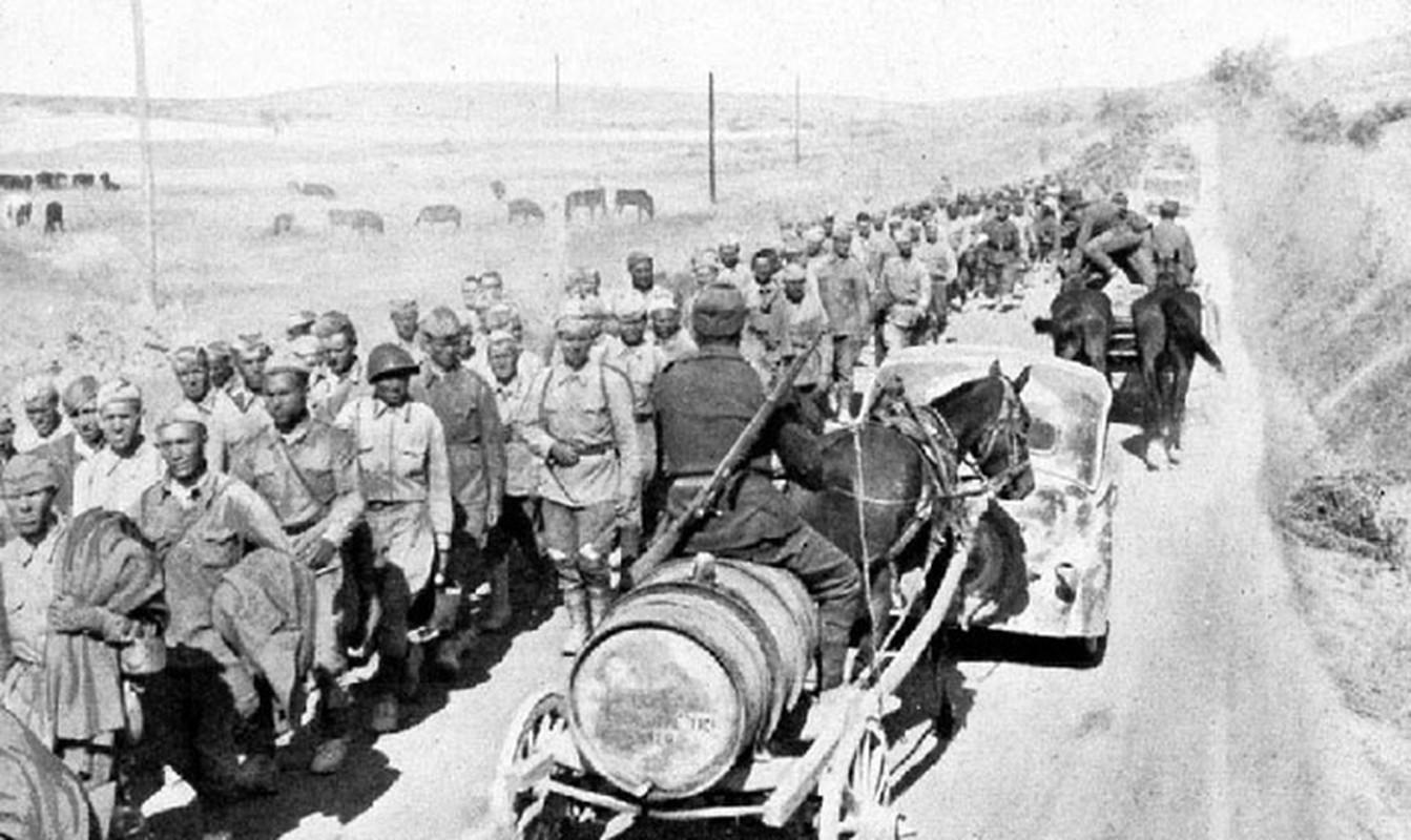 Vi sao Lien Xo dai bai o ban dao Crimea nam 1942?-Hinh-4