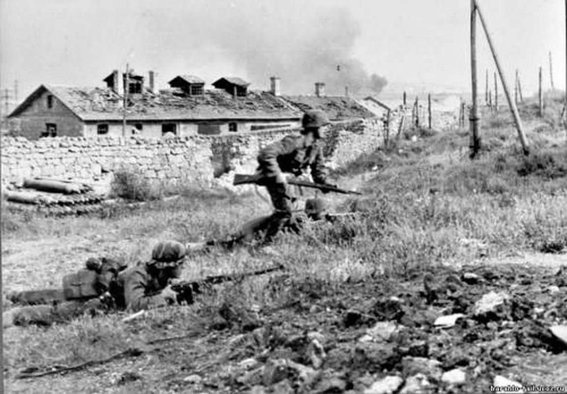 Vi sao Lien Xo dai bai o ban dao Crimea nam 1942?-Hinh-9