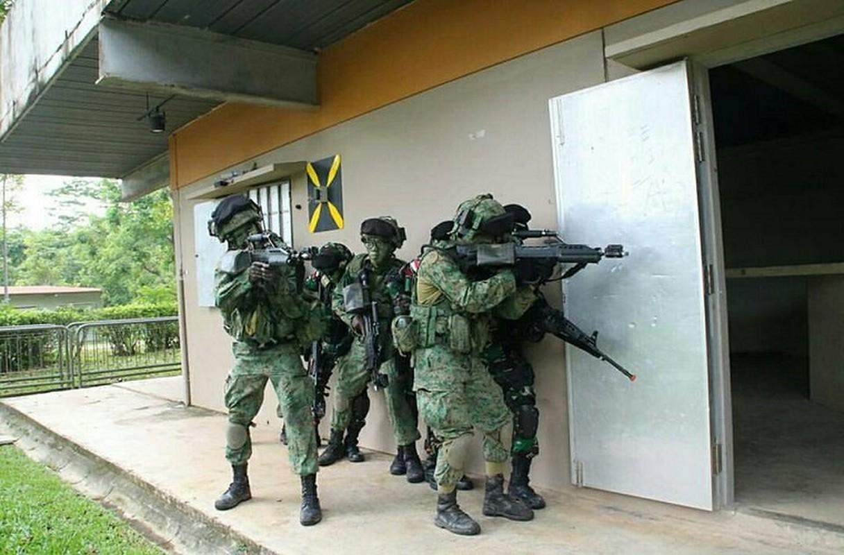 Muc kich lien quan Indonesia va Singapore dot kich giai cuu con tin-Hinh-9
