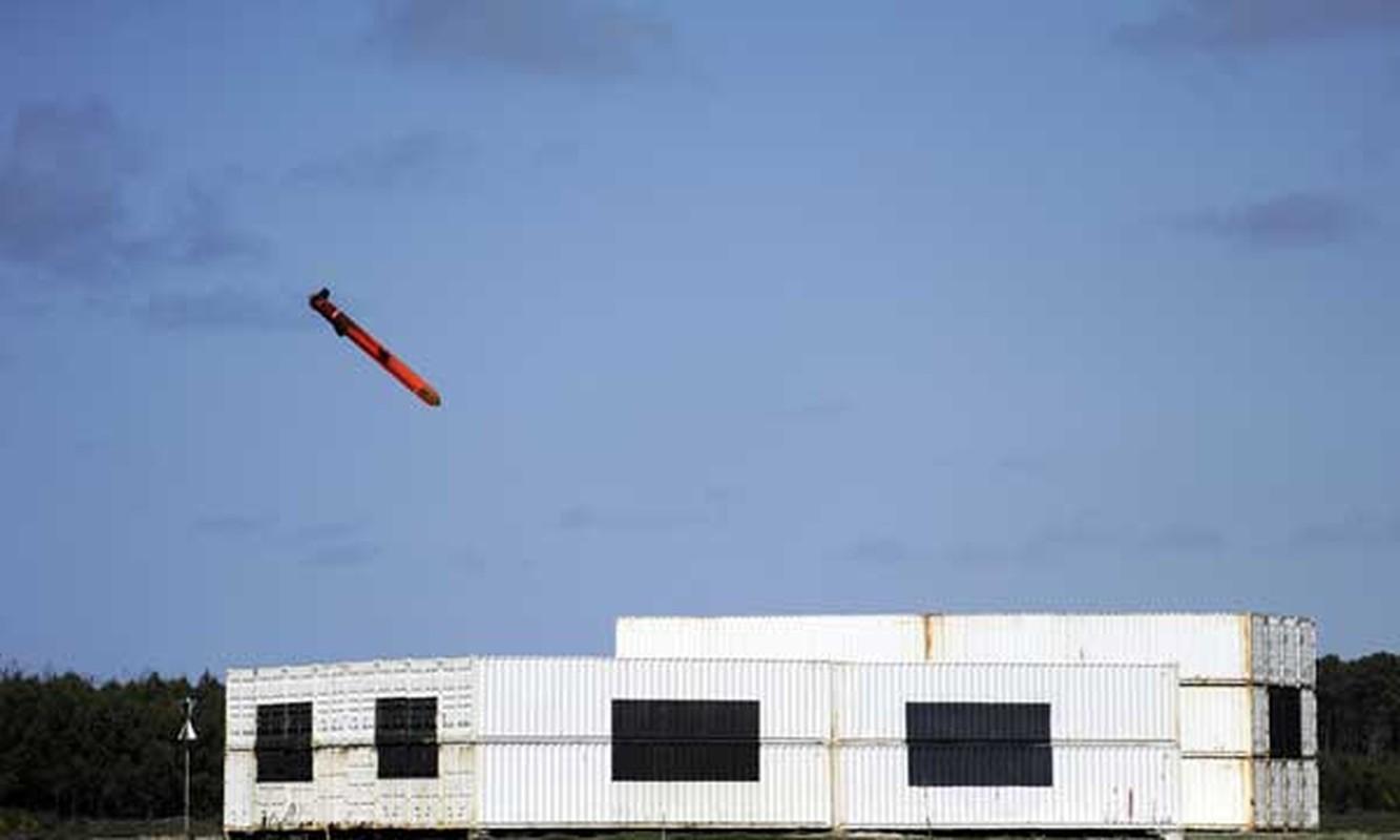 Phap duoc minh oan trong nghi van ban ha may bay Nga o Syria-Hinh-11
