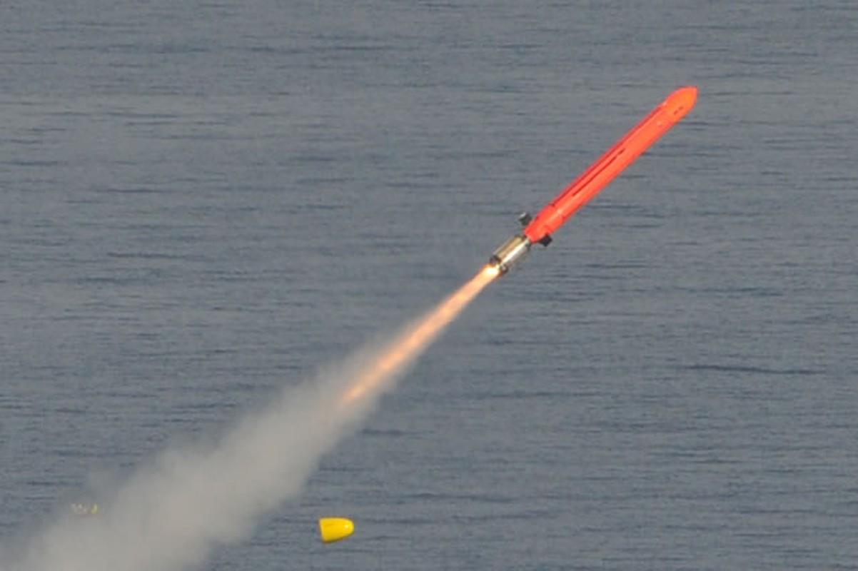 Phap duoc minh oan trong nghi van ban ha may bay Nga o Syria-Hinh-7