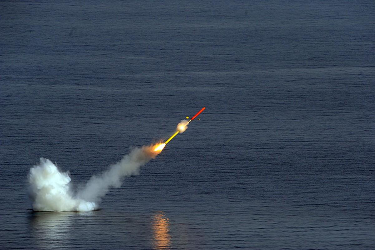 Phap duoc minh oan trong nghi van ban ha may bay Nga o Syria-Hinh-9