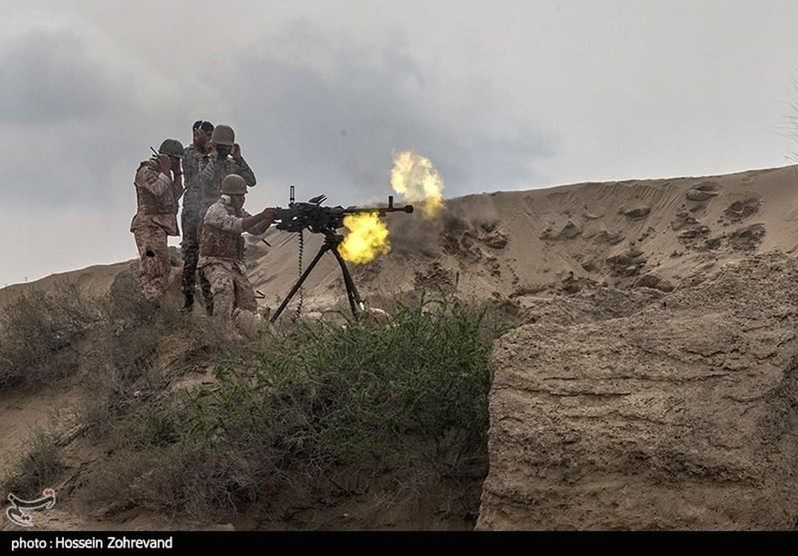 Choang voi man dien tap do bo cua Ve binh Cach mang Iran-Hinh-13