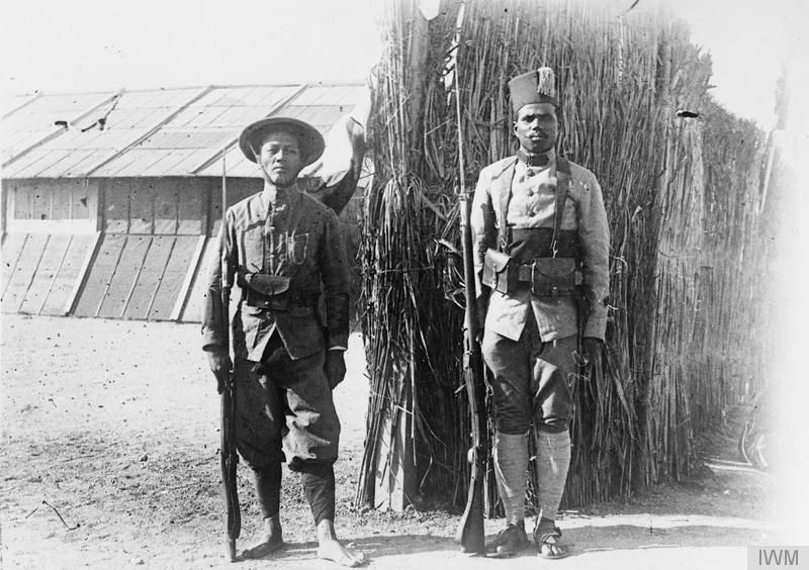 Vi sao nguoi Viet xuat hien o chien truong chau Au 1917?-Hinh-5