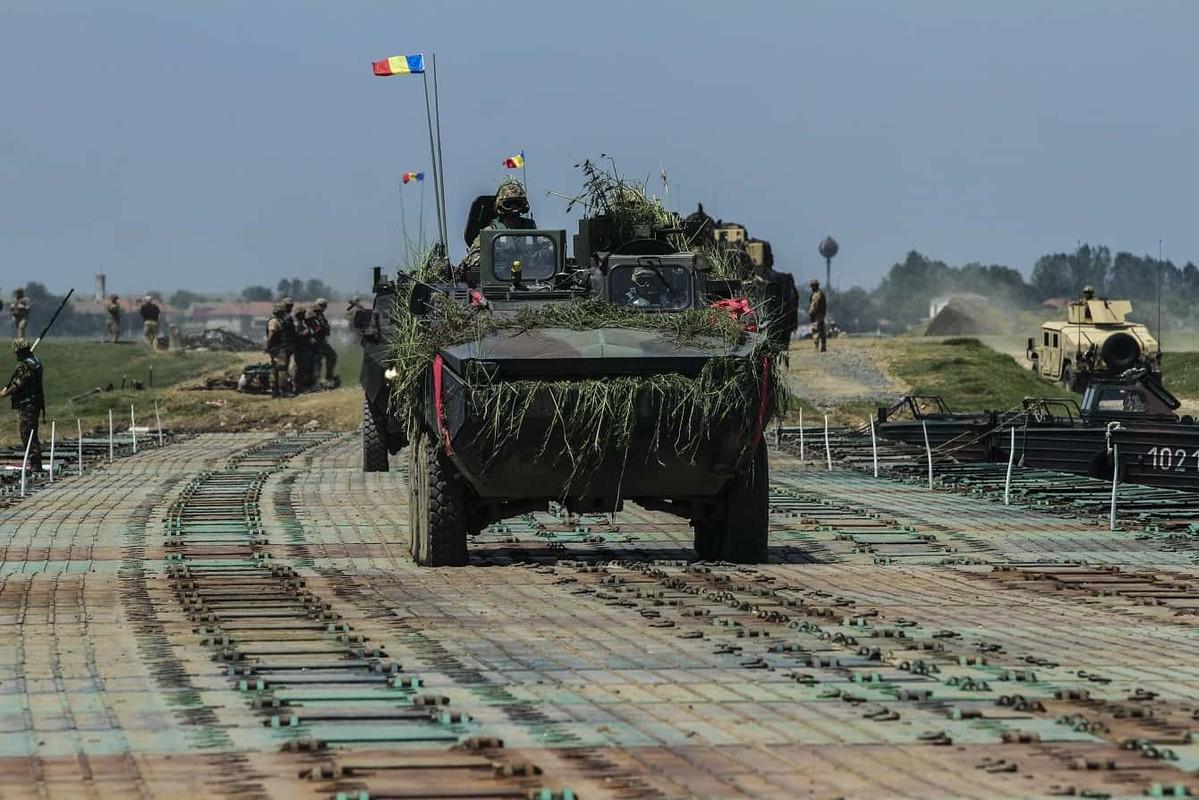 Tron mat xem NATO bac cau phao, vuot song to nhi chau Au-Hinh-5