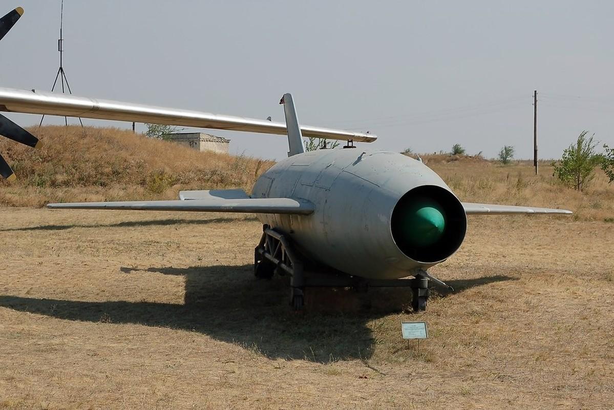 Ky la ten lua mang hinh dang tiem kich MiG-21 cua Lien Xo