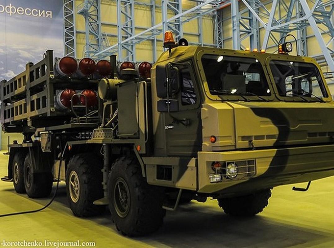 Vua nhap bien don vi dau, Nga da tinh trang bi tong cong 12 su doan S-350 Vityaz-Hinh-8