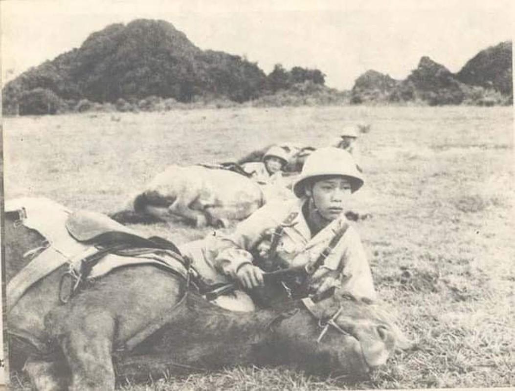 Tan mat xem Canh sat Co dong Viet Nam huan luyen ky binh-Hinh-5