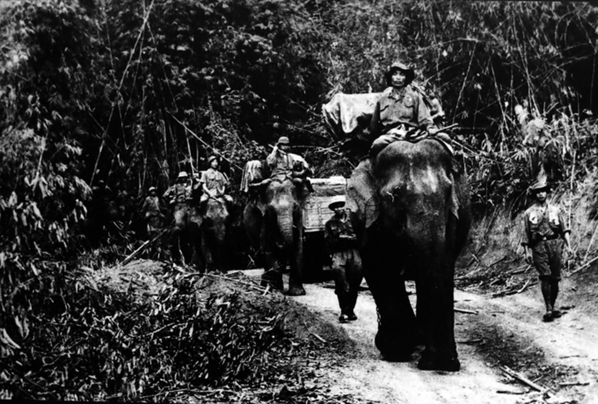Bo doi van tai Viet Nam sieu pham tren