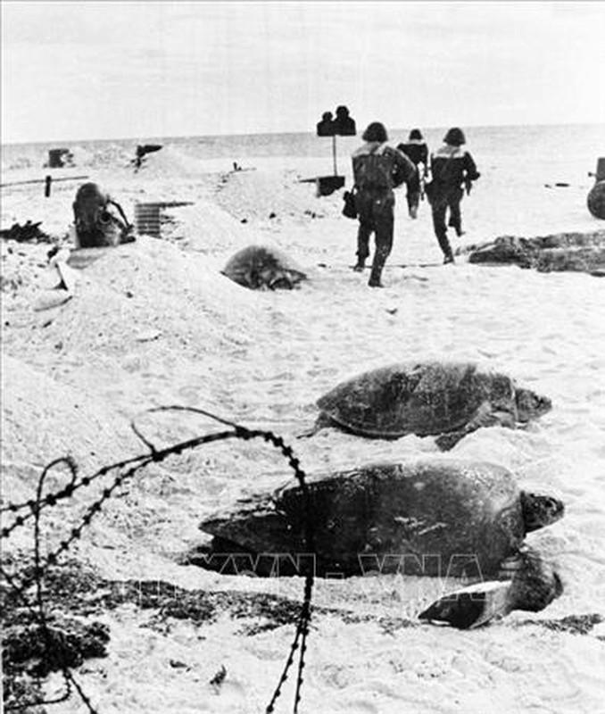 Hai quan Viet Nam giai phong hang loat hon dao trong chien dich Ho Chi Minh-Hinh-10