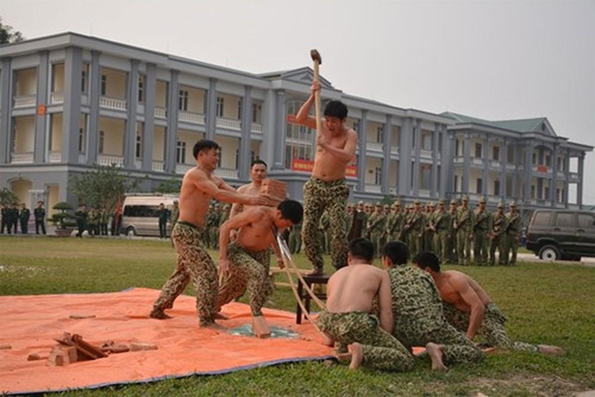 Suc manh vo thuat tuyet voi cua dac cong Viet Nam-Hinh-2