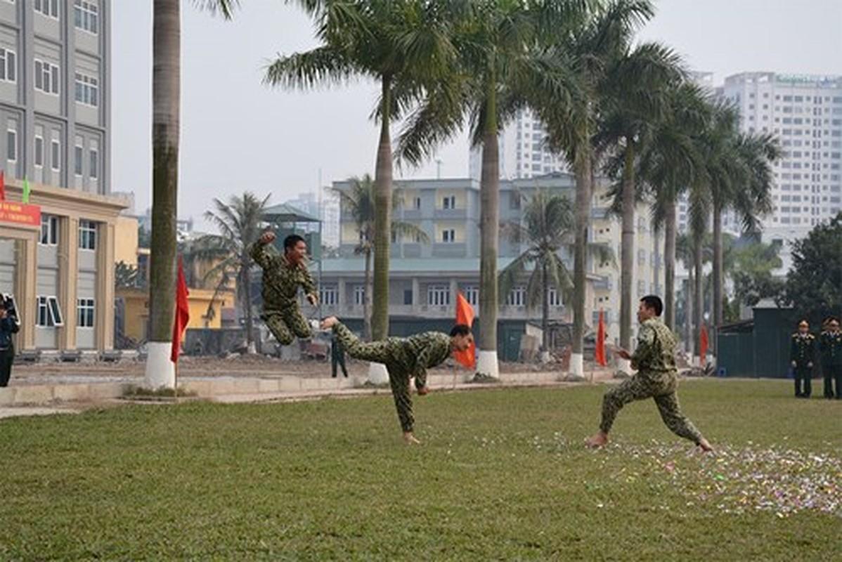 Suc manh vo thuat tuyet voi cua dac cong Viet Nam-Hinh-5