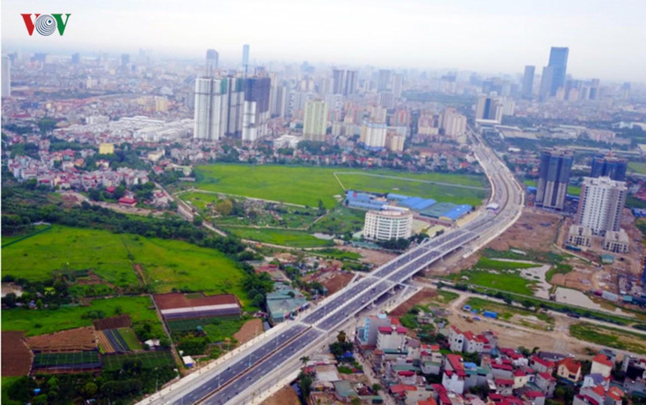 Anh: Bat thuong cay chet kho tren con duong 1.543 ty