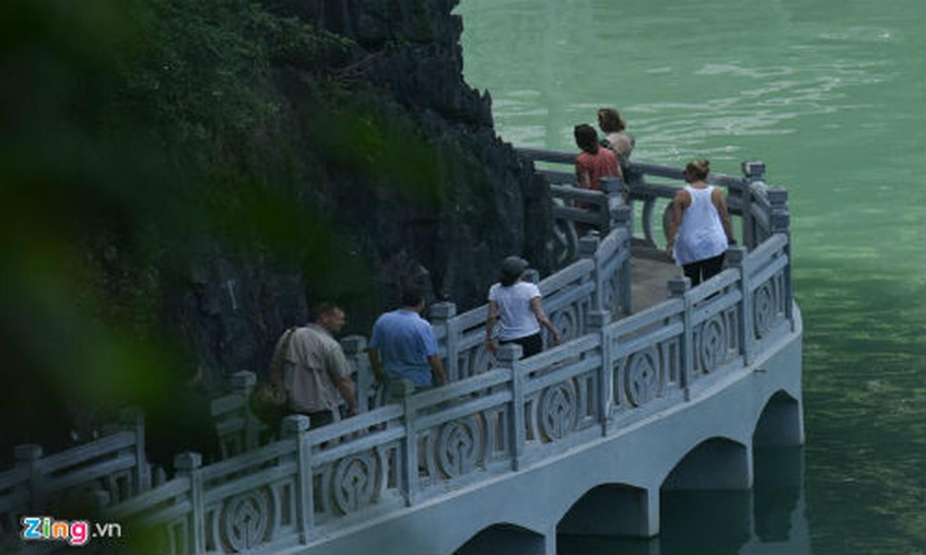 'Nu tuong' Facebook cung 2 con di du thuyen tham Vinh Ha Long-Hinh-11