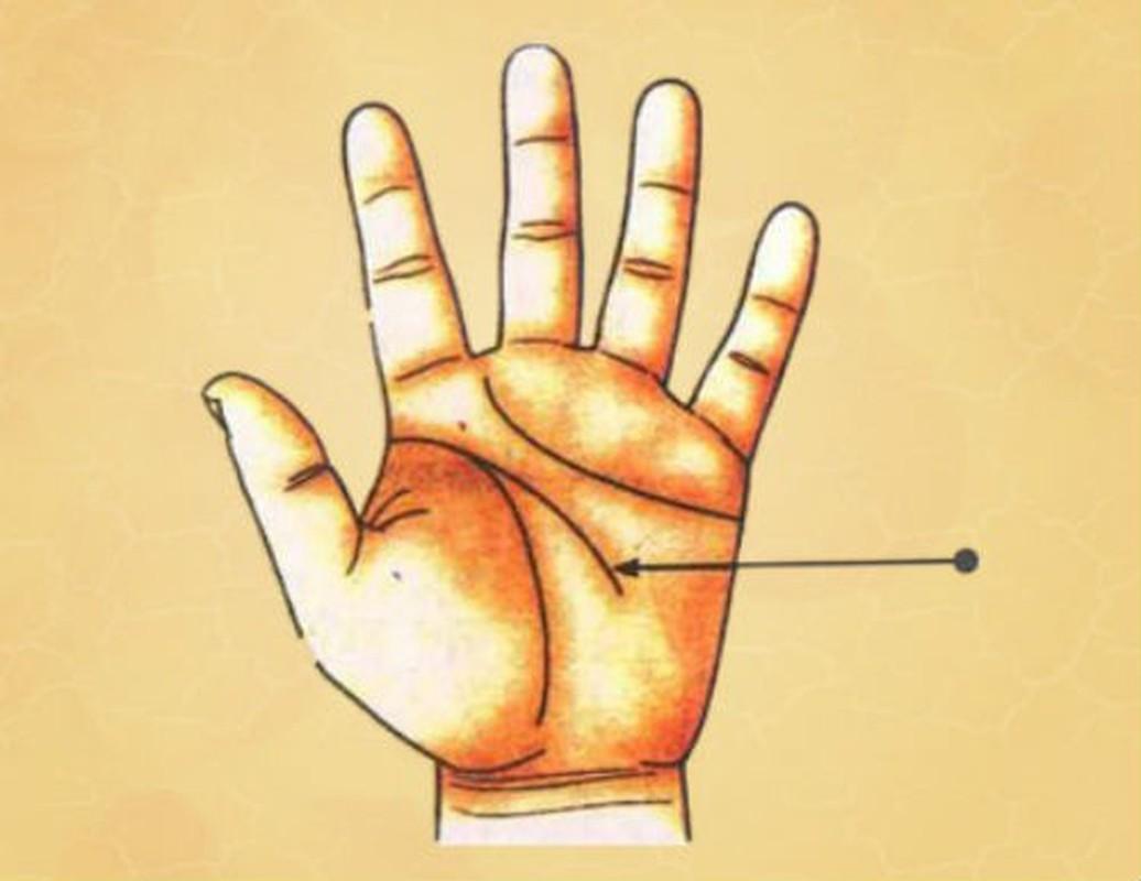 7 tuong ban tay cua dan ba e chong e cho-Hinh-4